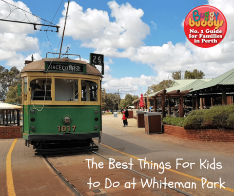 The Best Things to See and Do at Whiteman Park