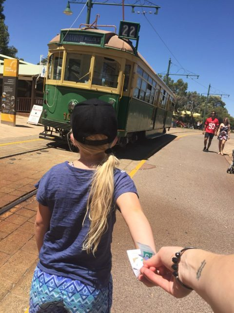 Whiteman Park Tram Ride