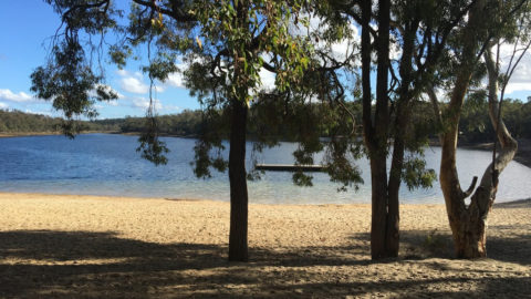 Lake Leschenaultia Camp Site