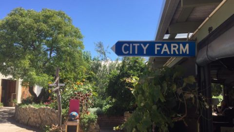 Perth City Farm Cafe, East Perth
