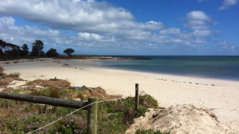 Sandy Bay Holiday Park, Busselton