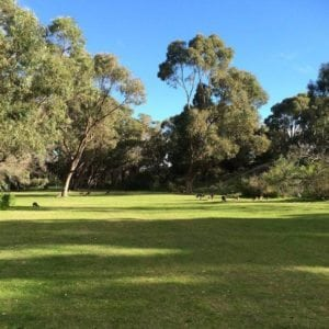 Pinnaroo Valley Memorial Park and Pinnaroo Café, Padbury
