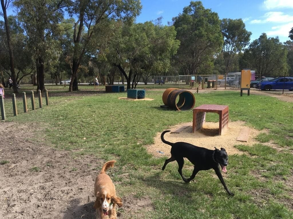 Whiteman Park Dog Park