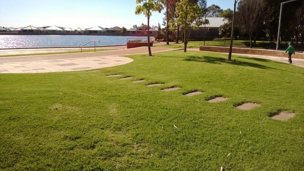 Rivergums Park
