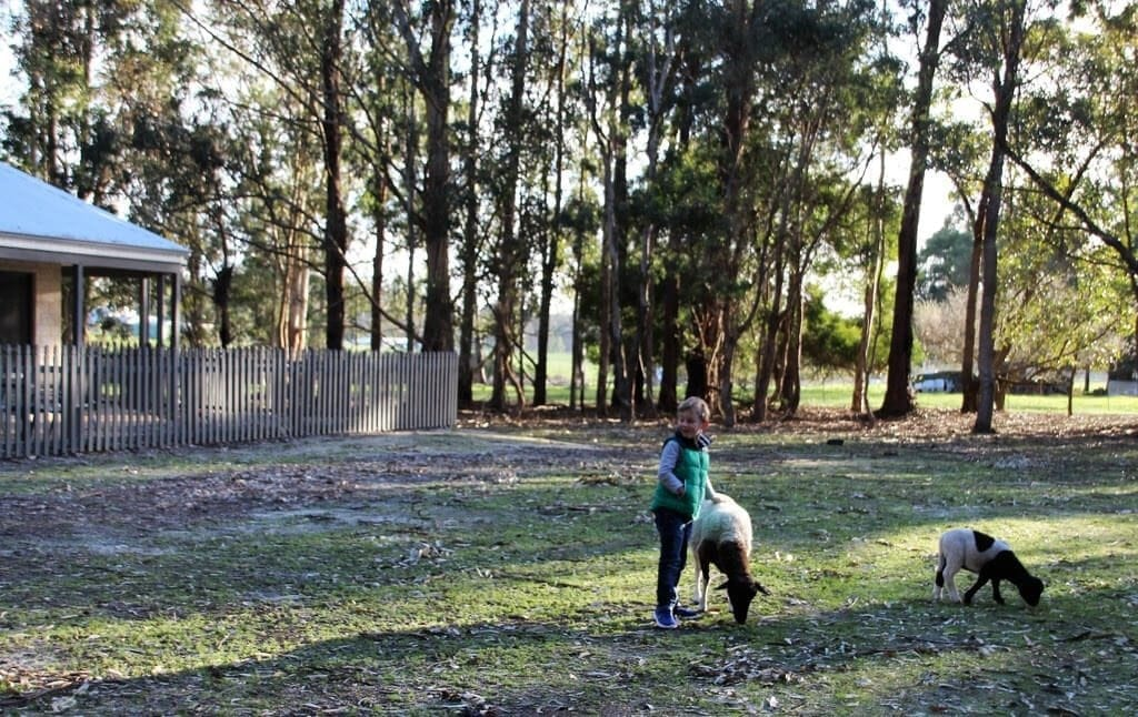 Margaret River Hideaway and Farmstay