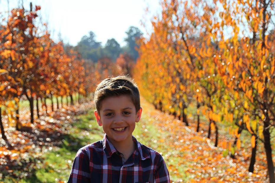 Raeburn Orchards, Roleystone