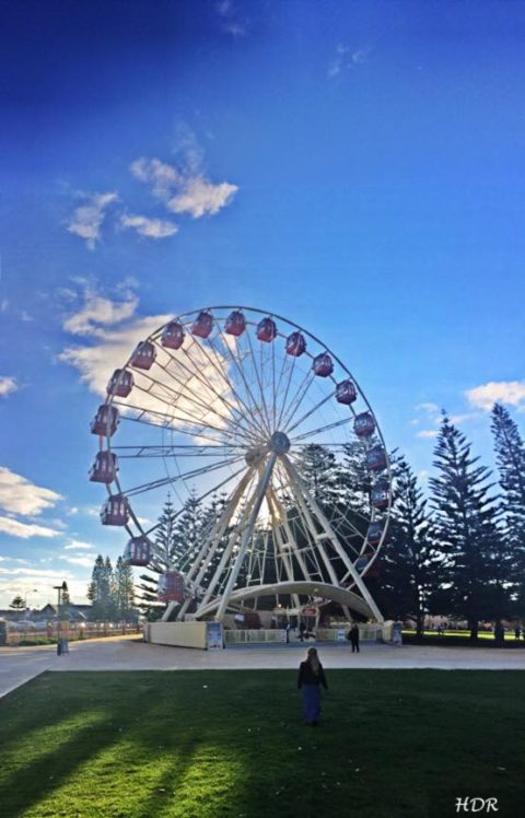 The Tourist Wheel Fremantle