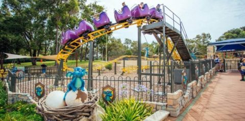 Top Activities For Under 5's at Adventure World