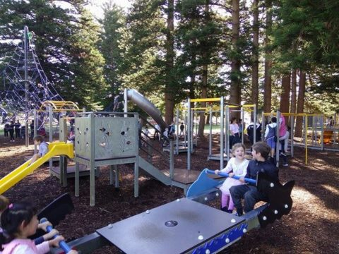 Top 10 Things to do with Kids – Fremantle