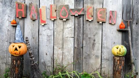 Top 5 Tips for Celebrating Halloween