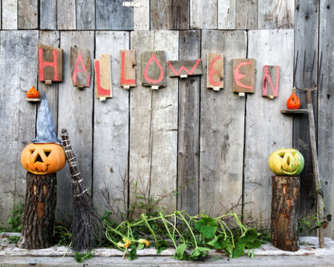 Top 5 Tips for Celebrating Halloween