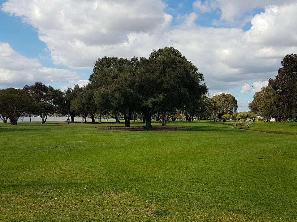 Sir James Mitchell Park - Hurlingham Rd Park
