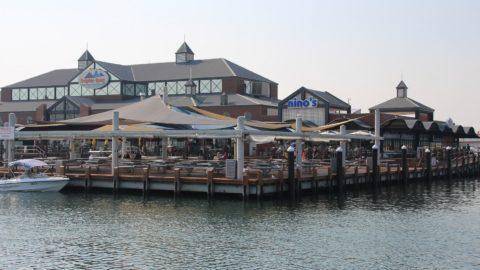 Things to do at Dolphin Quay, Mandurah