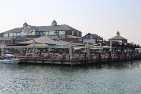 Things to do at Dolphin Quay, Mandurah