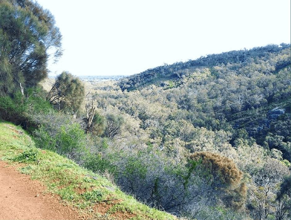 serpentine national park