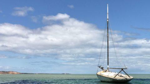 Denham Caravan Park, Shark Bay