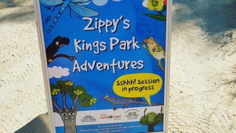 Zippy's Kings Park Adventures