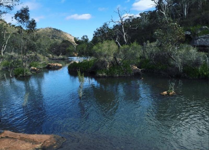 serpentine-national-park13