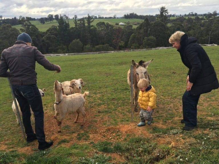 pemberton-farm-chalet
