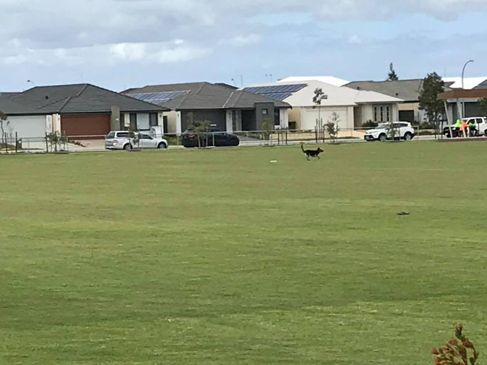 Rossiter Pavilion and Playing Fields, Piara Waters