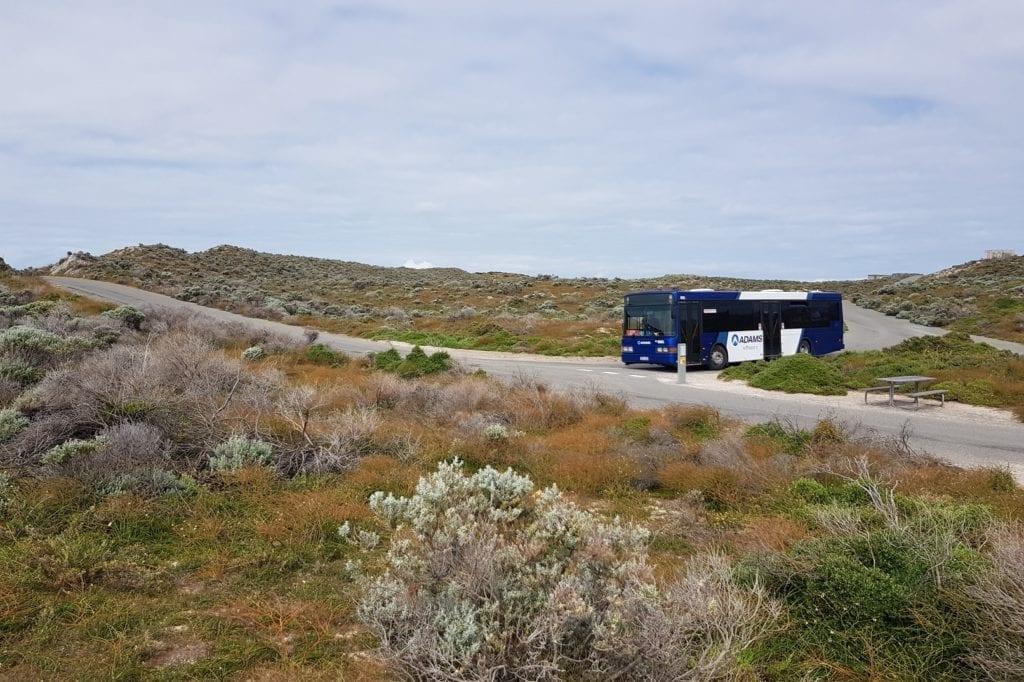 Rottnest Island Explorer Bus