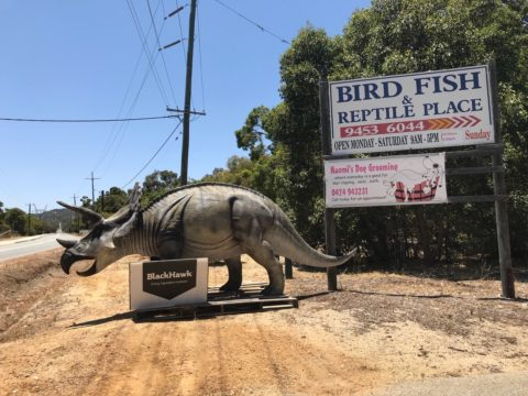 The Bird, Fish and Reptile Place, Wattle Grove