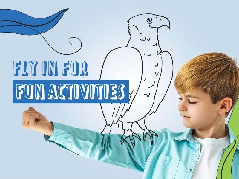 COCKBURN_BUGGY-BUDDIES_800x600-activities