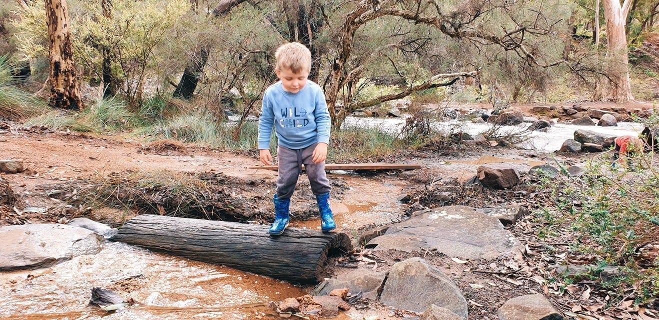 John Forrest National Park Nature Playground, Hovea
