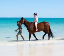 Wanneroo Riding Centre – Beach Horse Rides at Whitfords Beach