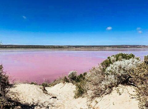 Pink Lake, Coral Coast